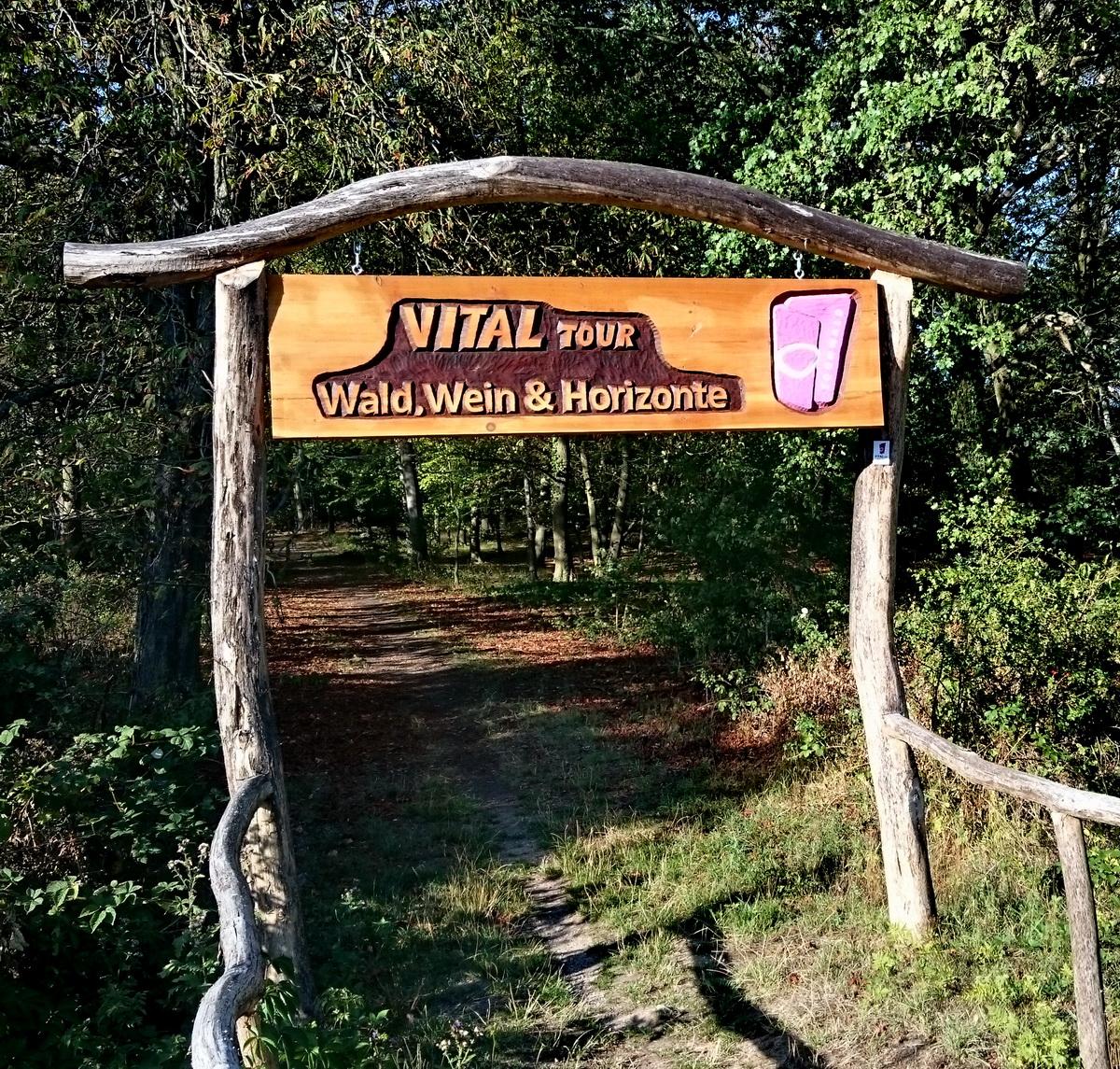 Start der Vitaltour Wald, Wein, Horizonte im Langenlonsheimer Wald