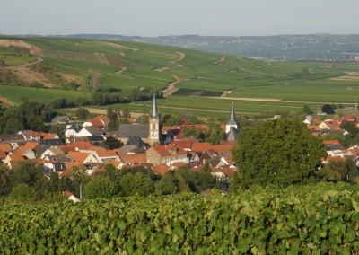 Blick auf Guldental Richtung Rheinhessen